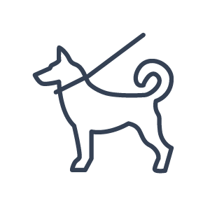 dog on leash icon